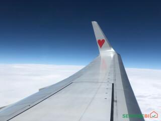 """ტურისტული კომპანია """"Love Travel"""""""