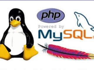 PHP / MY SQL