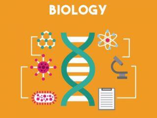მოვამზადებ ბიოლოგიაში სკოლის მოსწავლეებს და აბიტურიენტებს