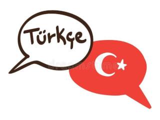 სამედიცინო ტექსტის თარგმანა თურქულიდან ქართულად და პირიქით
