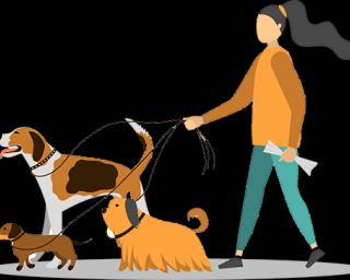ვასეირნებ ძაღლებს