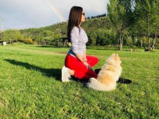 გავასეირნებ თქვენს ოთხფეხა მეგობრებს. ძაღლს, კატას. დავარცხნა, მოვლა. საბურთალო, ვერა-ვაკის ტერიტორიაზე. მყავს ძაღლი. მაქვს 2 წლიანი გამოცდილება.