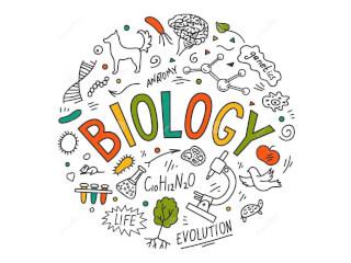 მოვამზადებ მოსწავლეებსა და აბიტურიენტებს ქიმიასა და ბიოლოგიაში