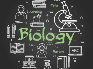 სკოლის მოსწავლეების მომზადება ბიოლოგიაში