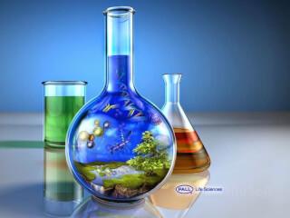 მომზადება ქიმიაში